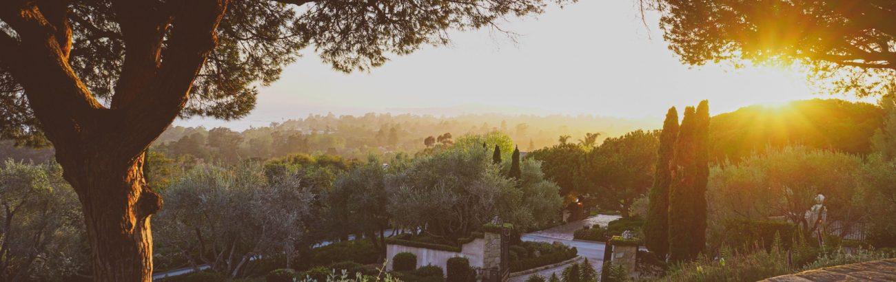 Sunset View1